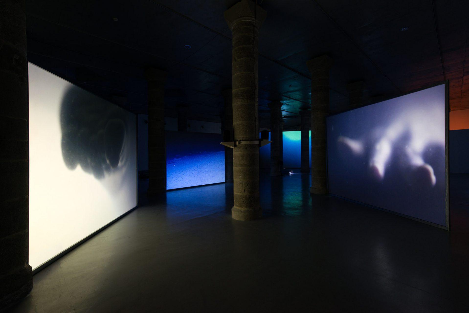 Nou programa expositiu al Centre d'Art la Panera