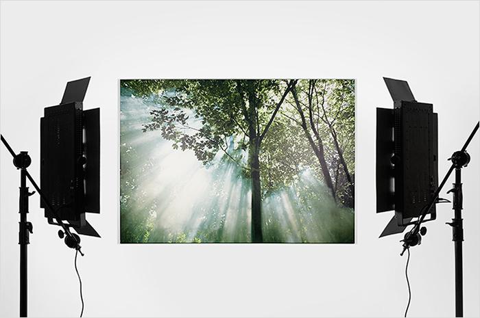"""Taller """"L' A,B,C,D,E per a Fotografiar la teva obra"""" amb Marc Serra"""