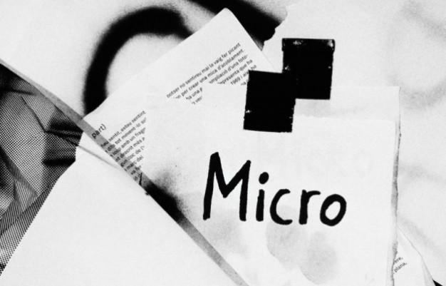 MICRO#2, Irina Mutt