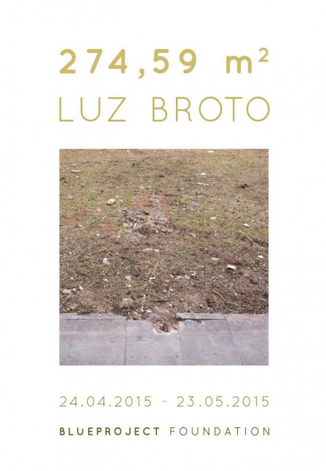 274,59 M2 de Luz Broto