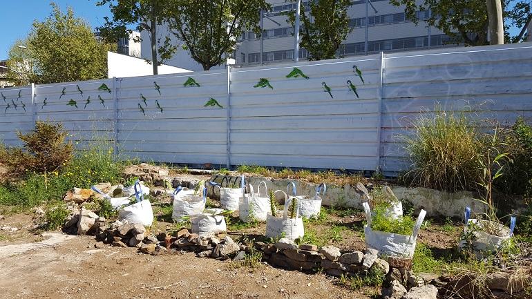 Vides nòmades, afectes mòbils. Taller de construcció d'un jardí de plantes invasores, a càrrec de l'artista i jardinera Vicky Benítez