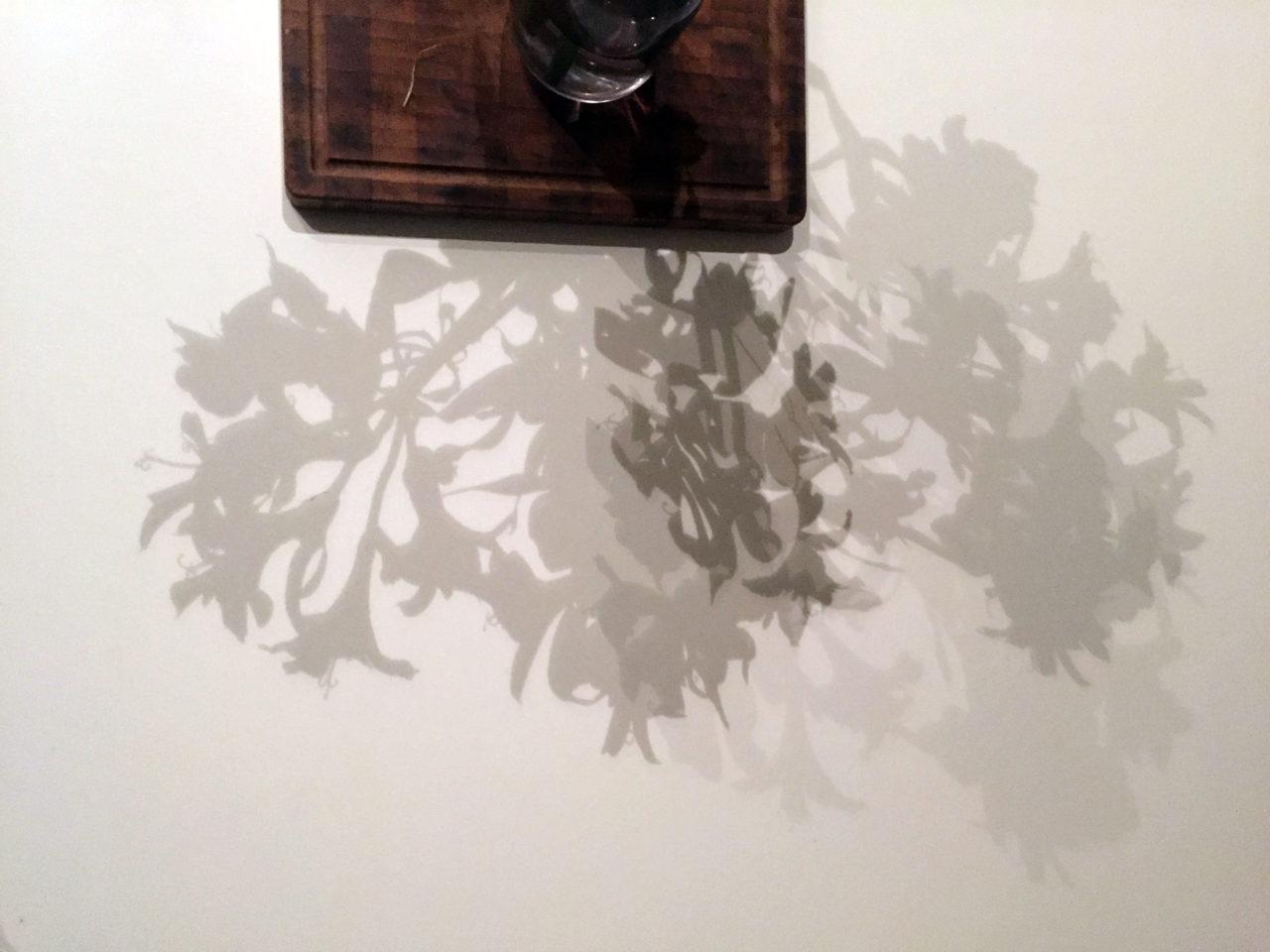 Instal·lació/performance amb la col·laboració de Massimiliano Moro