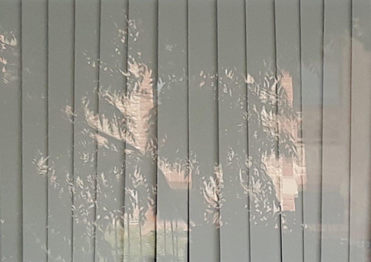 Damunt vidre: La idea d'una imatge. Martin Vitaliti